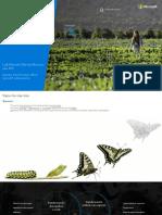 1. Piu deck - Microsoft transformation story - AI roadshow v3 spanish_es.pdf