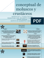 Mapa conceptual de los moluscos y crustáceos [Autoguardado]