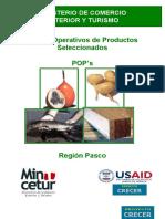 POP_PASCO.doc
