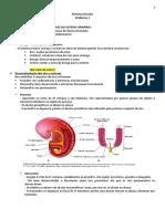 SISTEMA RENAL - RESUMÃO.pdf