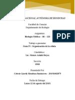 GUIA DE LAS CELULAS.docx