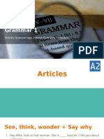Grammar 1_ Articles, Question tags, Indirect Questions, Emphasis.pptx