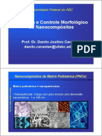 Reologia e Controle da Morfologia de Nanocompósitos