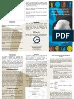 triptico modelo de sistemas.pdf