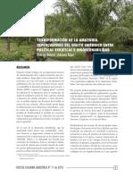 1 transformacin de la amazonia repercusiones del efecto sinrgico entre polticas errticas e ingobernabilidad