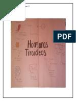 BIOLOGIA ll SEGUNDA SEMANA GUADALUPE REYES MARTINEZ SEGUNDO 2 MAPA Y RESUMEN .pdf