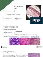 Presentación Tejido cartilaginoso 2020