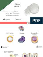 Presentación La célula. Parte 2. 2020.pdf