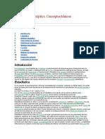 Estadística descriptiva.docx