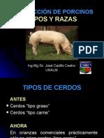 2.Tipos y Razas, Chiclayo
