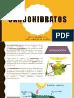 carbohidratos_farmacognosia1.pdf