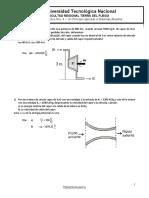 Tp Nro 4  - 1er Principio aplicado a Sistemas Abiertos Circulantes.pdf