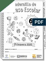 CR6toGrado2020MEX.pdf
