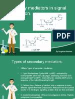 Secondary mediators in signal transduction. Cyclic AMP