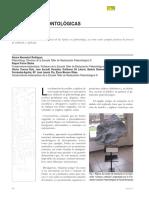 Aberasturi et al 2010 - Réplicas paleontológicas