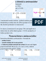 aa+proteine partial