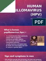 REPORT HPV.pptx