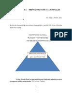 GUÍA PRINCIPIOS CONSTITUCIONALES