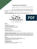 Filtracion_conceptos (1)