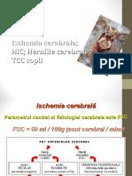 Curs 4-Ischemie-HIC.ppt