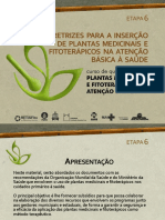 C1_E6_PPT_Diretrizes_para_a_Insercao_de_Plantas_Medicinais