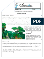 Guía números racionales (5º)
