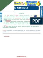 Contracción-y-Concordancia-del-Artículo-para-Tercer-Grado-de-Primaria