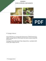 PPT Entomologi.pptx