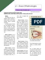 Ciencias Basicas en Oftalmologia