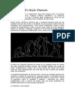 Resumo da Evolução Humana