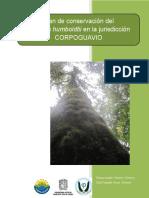 Roble. Quercus humboldtii