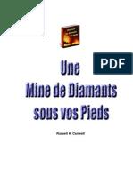 Une Mine de Diamants Sous Vos Pieds