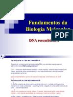 BCM II - DNA recombinante