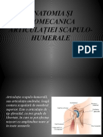 articulatiei scapulo-humerale