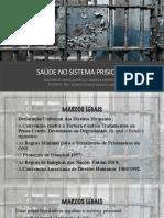 SAUDE PRISIONAL.pdf
