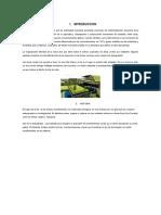 INTRODUCCION techo verde  (1)