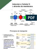 aula 3 transporte atraves de membranas.pdf