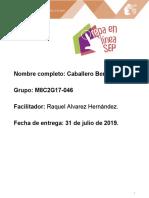 CaballeroBernal_Fabian_M08S2AI4