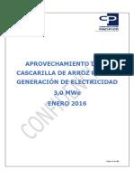 PROYECTO TIPICO CASCARILLA DE ARROZ CON DOS ETAPAS REV FINAL .pdf