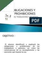 OBLIGACIONES Y PROHIBICIONES en las relaciones del trabajo PDF