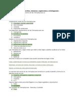 Examen de; clorofitas, diatomeas, euglénoideos y dinoflagelados