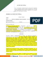 PRINCIPIOS CONS.docx