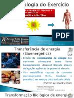 SLIDES_FISIOL_EXER.pdf