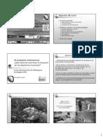 Tornos Antofagasta 2006 Ambiente Hidrotermal.pdf