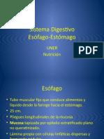 Esófago-Estómago