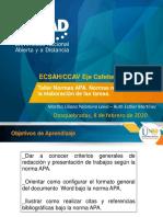 Taller APA 2020.pdf