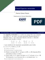4_Espacios_vectoriales.pdf