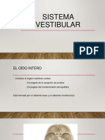 1 sistema vestibular