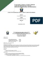 PLAN-DE-VISITA-DOMICILIARIA.docx