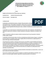 APLAN  DE AREA  MATEMATICAS SEXTO - UNDECIMO 2019 ALIDA